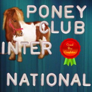 this is a compilation of 16 tracks going in all directions from the electro clash underground. viva el poney.