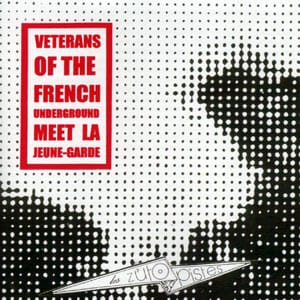A compilation of French musicians where generations meet. with Daevid Allen (Gong) , Pascal Comelade, Pierre Bastien... and a long version of Joy Divisé, played live in Spain with Jac Berrocal and Ghédalia Tazartès. David Fenech has also mixed the tracks by Daevid Allen + Klimperei and Jo Thirion + Mme Patate for this album.